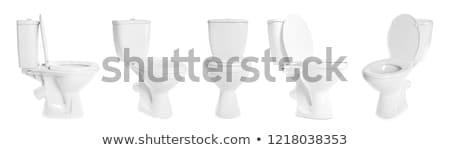 different toilet bowl isolated on white Stock photo © ozaiachin