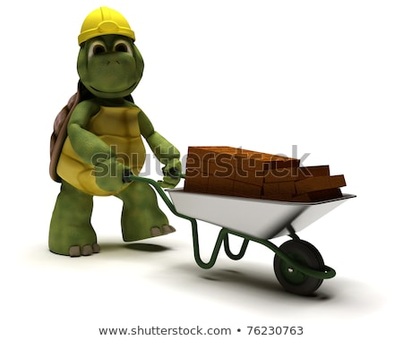 tortoise Builder with a wheel barrow Stock photo © kjpargeter