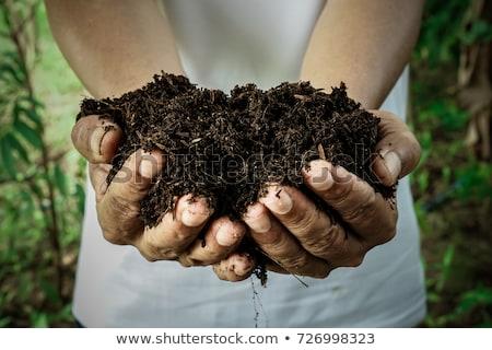 土壌 · 手 · 農業の · ワーカー · 春 - ストックフォト © stevanovicigor