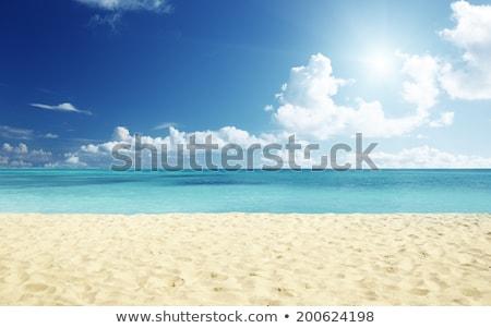 Peace beach shore sand clear water sea summer Stock photo © cienpies