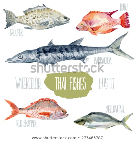 Sebastes. Marine Food Fish Stock photo © ConceptCafe