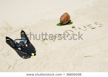 Maldives concept with coconut fruit and snorkeling equipment Stock photo © luissantos84