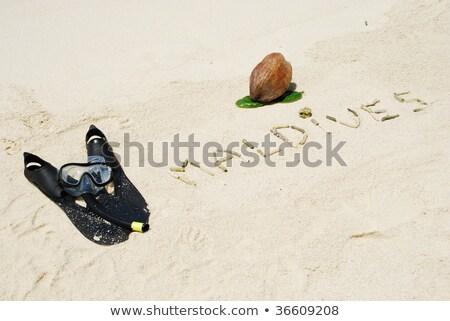 Maldive cocco frutta scritto Foto d'archivio © luissantos84