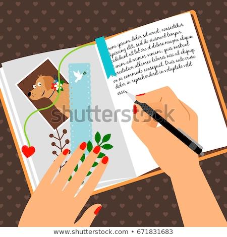 Lány ír napló illusztráció gyermek diák Stock fotó © bluering