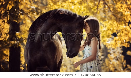 Black&white portrait of a model with a horse Stock photo © konradbak