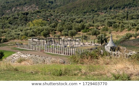 Ruins of stadium in Ancient city of Messina, Peloponnese, Greece Stock photo © ankarb