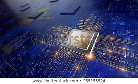 Micro chip eenheid microchip geïsoleerd witte Stockfoto © pakete