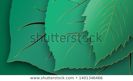 kivágás · évszakok · üdvözlet · fa · kártya · vektor - stock fotó © piccola