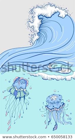 Kék magas hullám hab sapka kettő Stock fotó © orensila