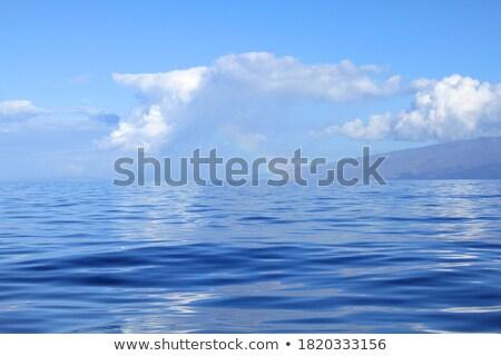 Bulutlar okyanus üzerinde güney Stok fotoğraf © kraskoff