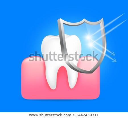 Foto stock: Goma · proteção · dente · protegido · bactérias · escudo