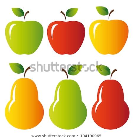 Peer vruchten groen blad cartoon tekening eenvoudige Stockfoto © hittoon
