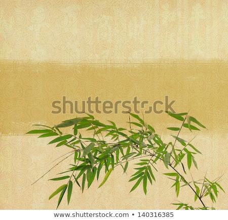 bambusa · starych · grunge · antyczne · tekstury · papieru · papieru - zdjęcia stock © rufous