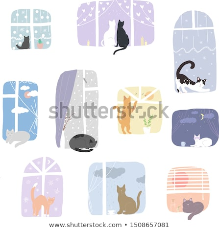 gatos · gato · casa · naturaleza · retrato · pintura - foto stock © pikepicture