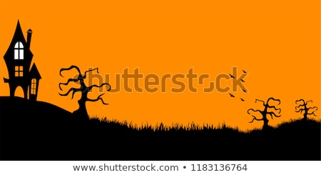 halloween scary house with flying bats background Stock photo © SArts
