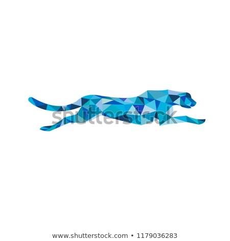 Foto stock: Leopardo · corrida · lado · baixo · polígono · estilo