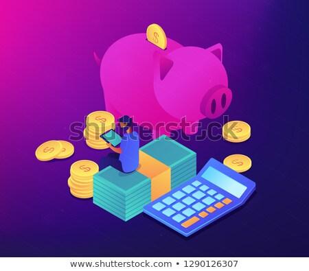 Budget controle app isometrische 3d illustration zakenman Stockfoto © RAStudio