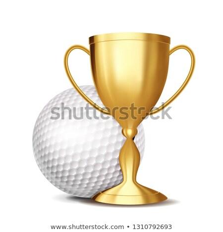 мяч · для · гольфа · иллюстрация · традиционный · белый · искусства · мяча - Сток-фото © pikepicture