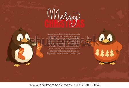 penguin animal with wings smooth feathers bird stock photo © robuart