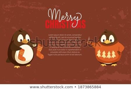 Pinguim animal asas pássaro bico Foto stock © robuart