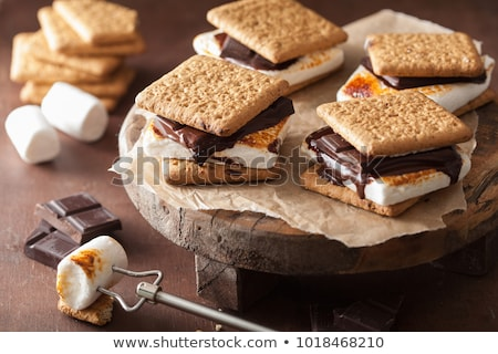 Homemade s'mores with crackers, marshmallows and chocolate Foto stock © furmanphoto