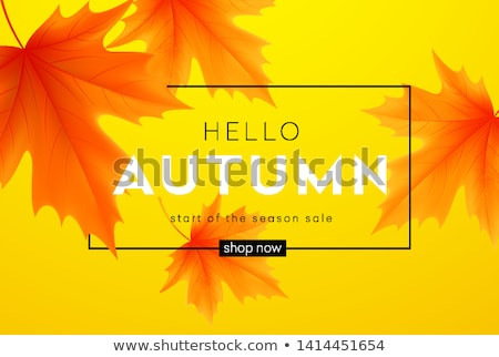 najaar · korting · gift · card · ontwerp · esdoorn · bladeren - stockfoto © sanyal