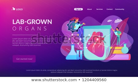 lab grown organs concept landing page stock photo © rastudio