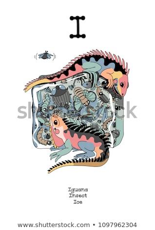 inglês · estilo · cartaz · grunge · imagem · dobrar - foto stock © vetrakori