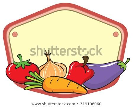 Alimenti freschi verdura vuota banner vettore zucca Foto d'archivio © robuart
