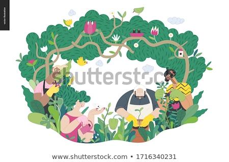 Gazdálkodás férfi kertészkedés személy vág bokrok Stock fotó © robuart