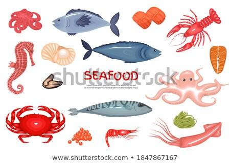 Deniz ürünleri ayarlamak deniz bas istiridye Stok fotoğraf © robuart