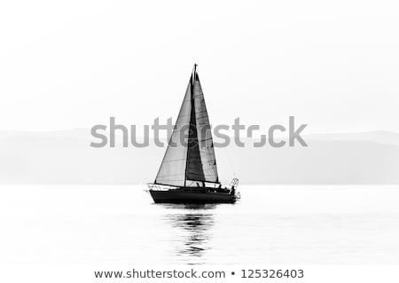 Zeegezicht witte zeilboot Blauw water surfen Stockfoto © vapi