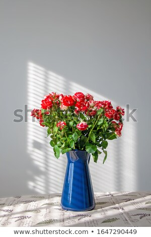 Red roses with blue blinds Stock photo © ivonnewierink