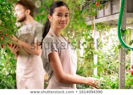 かなり 小さな 女性 植木屋 エプロン ストックフォト © pressmaster