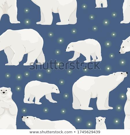 Orso polare bianco nero abstract natura design Foto d'archivio © ShustrikS