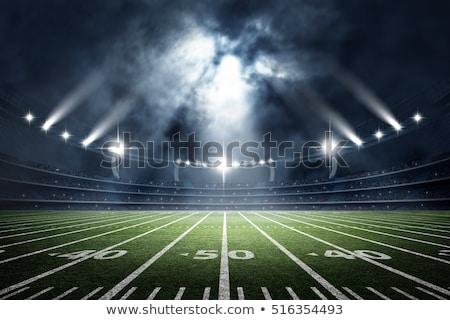 アメリカン フットボールの競技場 ボール 実例 現実的な 緑 ストックフォト © enterlinedesign
