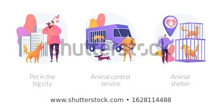 Mascota mantenimiento vector metáforas municipal perros Foto stock © RAStudio