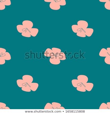 Vector bloemen naadloos ontwerp eenvoudige botanisch Stockfoto © natali_brill