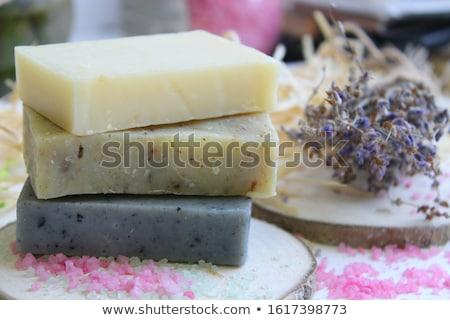 Handgemaakt zeep borstel cute beer schoonheid Stockfoto © Ansonstock
