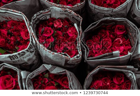 wrapped rose in market Stock photo © smithore