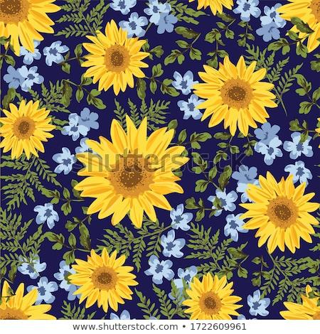 Ayçiçeği model çiçekler yaz turuncu kumaş Stok fotoğraf © Galyna