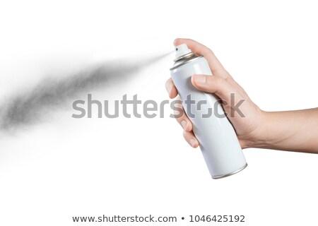 Mulher spray de cabelo retrato belo ver bastante Foto stock © photography33