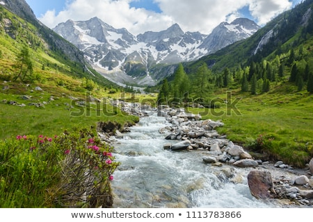 mountain torrent Stock photo © chrisroll