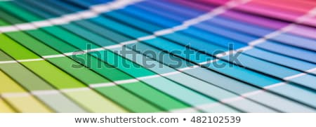 Decorator with a color swatch stock photo © photography33