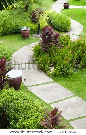 Beautiful Grass Tiles Walk Way In The Garden Foto d'archivio © szefei
