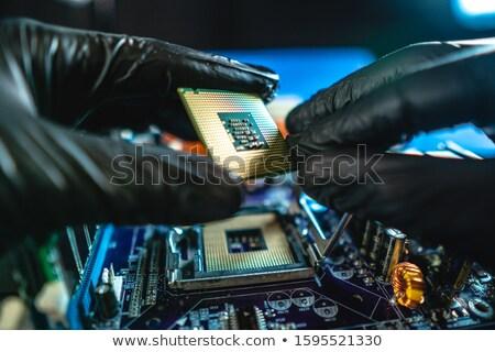 Microprocessor zwarte handschoenen industrie wetenschap digitale witte Stockfoto © pterwort