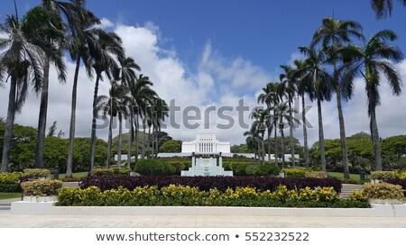 Hawaii tempio hdr immagine isola Foto d'archivio © pixelsnap