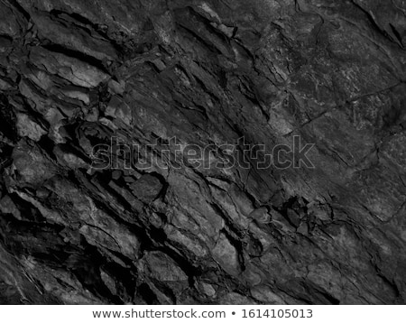 Textured Rock and Trees Stock photo © Kenneth_Keifer