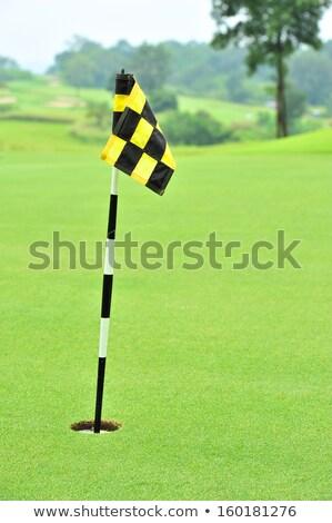 Uygulama yeşil bayrak delik bahar golf Stok fotoğraf © grivet