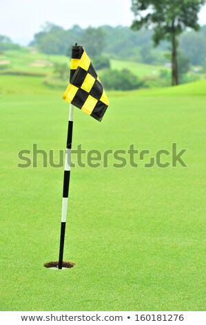 Practice Green Flag stock photo © grivet
